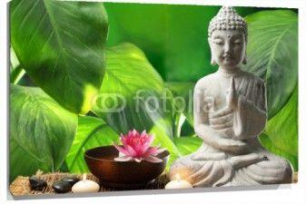 Cuadro Buda zen hojas