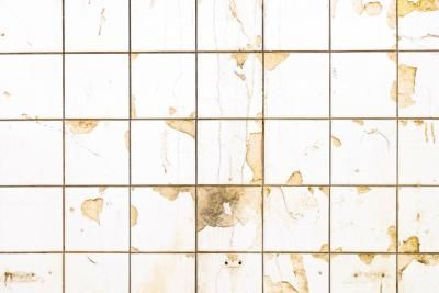 How to Hide Kitchen Wall Tiles   Toilet stains, Tiles ...