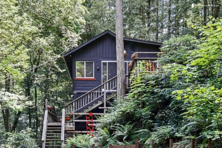 Beautifully Decorated and Secluded Cabin Rental in Sonoma County, California