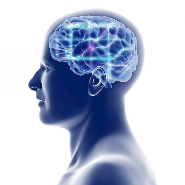 Synapsyl brain boost reviews photo 3
