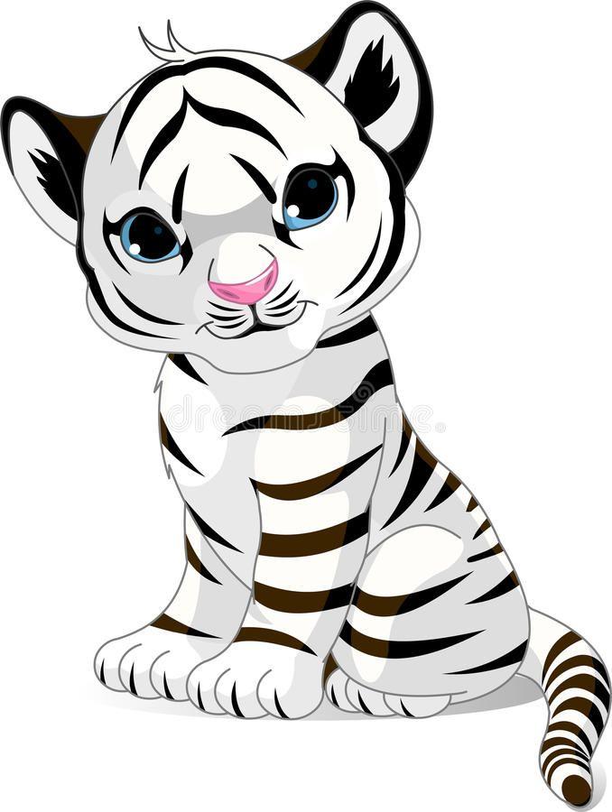 Filhote De Tigre Branco Bonito Ilustracao Royalty Free Dessin