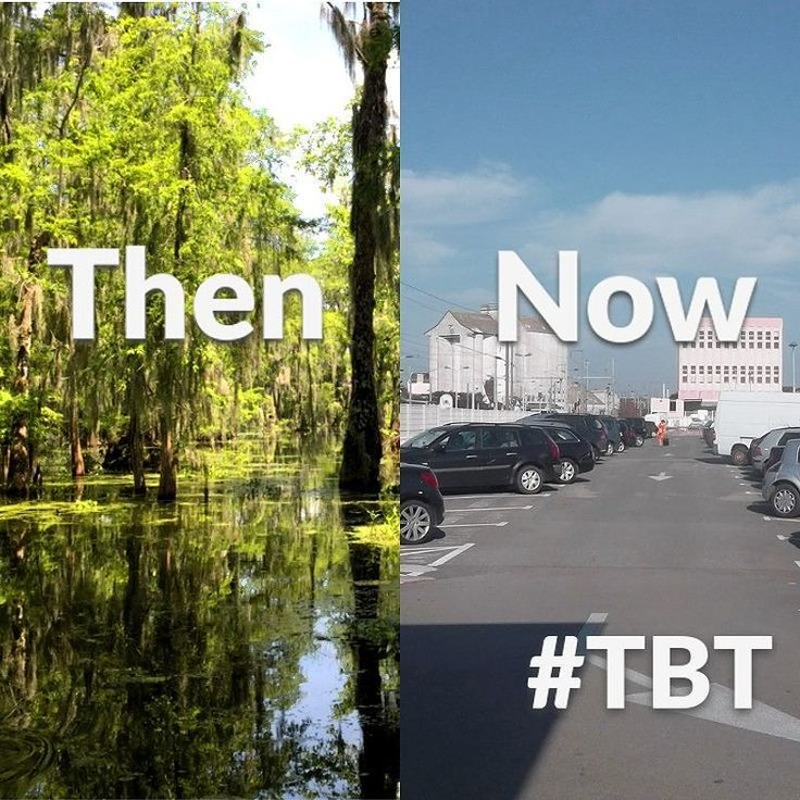 Look at that all that life steamrolled and flattened. And for what? ANOTHER parking lot. That was an animals home. Gone just like that #tbt #throwbackthursday #swamp #mall #shopping #death #savetheplanet