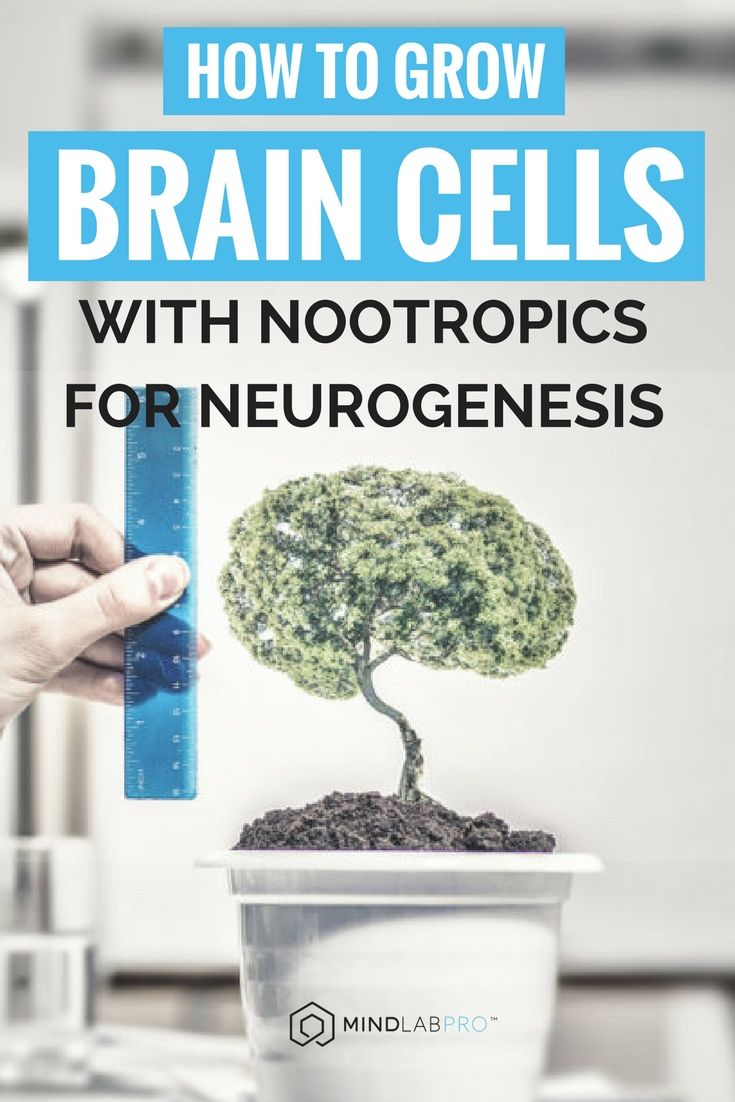 How to Grow Brain Cells with Nootropics for Neurogenesis