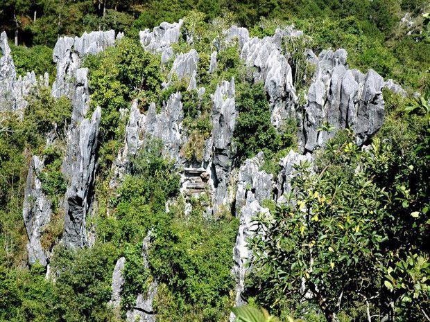 Grotte funéraire à Sagada sur l'île de Luçon, aux Philippines