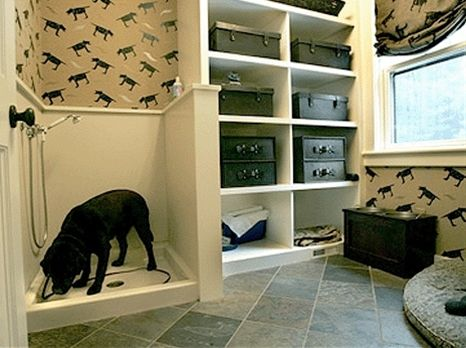 Dog Room  -  We just did one of these but i don't have pictures back yet :( www.MarbleWorksIowa.com