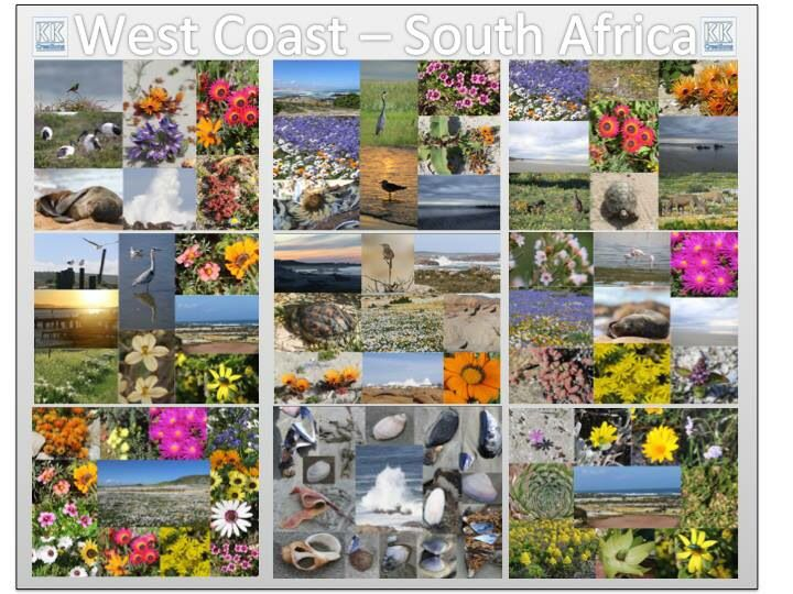 West coast -South Africa
