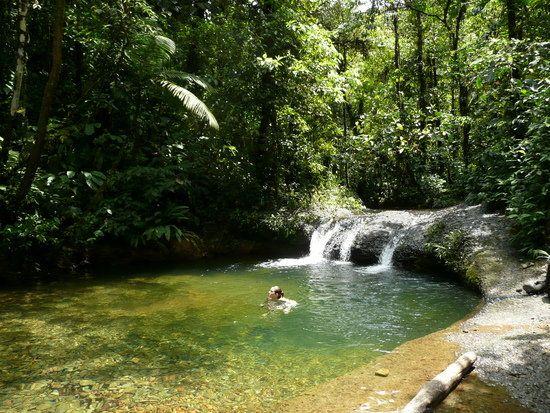 Reserva Natural San Cipriano, Buenaventura, Colombia - Buscar con Google