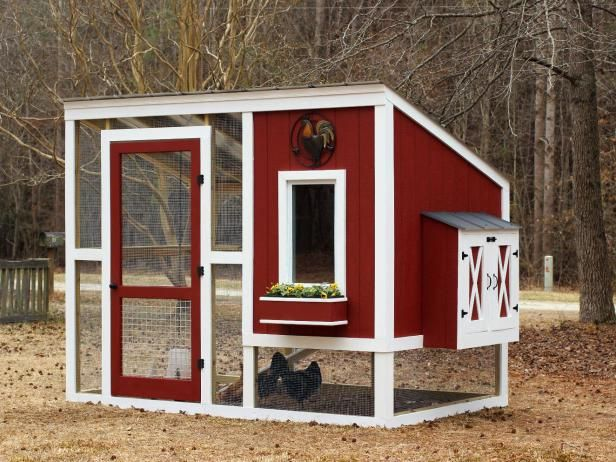 Step-by-step plans from HGTV Gardens for a backyard coop to suit any style. Will hold up to 6 chickens.