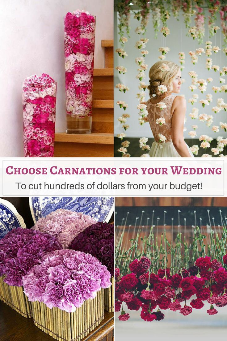 Before you scoff at the idea of using carnations at your wedding, consider this: Using this versatile flower will save you HUNDREDS of dollars on your wedding budget. | wedding flower arrangements | #weddinginspiration