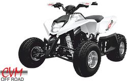 ATV FX WAY 250CC