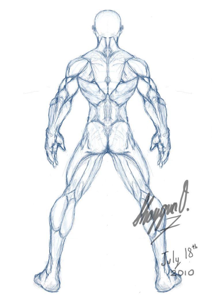 male drawing template   Male Anatomy Template: Back by ~Shintenzu on deviantART