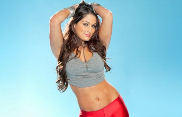Nikki Bella WWE Fresh HD Wallpaper 2013-14 | World HD ...