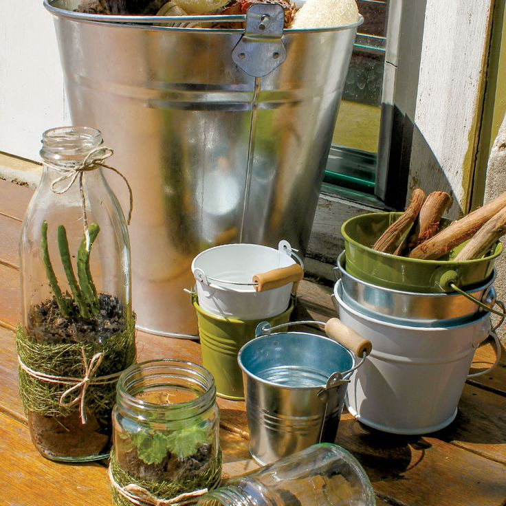 Terrariums look gorgeous dont they!