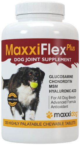 Dog Joint Supplement  Glucosamine Chondroitin MSM Hyaluronic Acid Devils Claw Bromelain Turmeric  120 Liver Flavored Tablets  MaxxiFlex Plus for Maximum Dog Joint Health and Improved Mobility * Read more at the affiliate link Amazon.com on image.