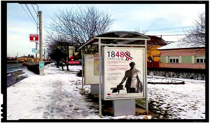 Antiromânism pe bani publici la Satu Mare?