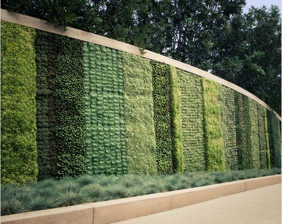 parete verde verticale