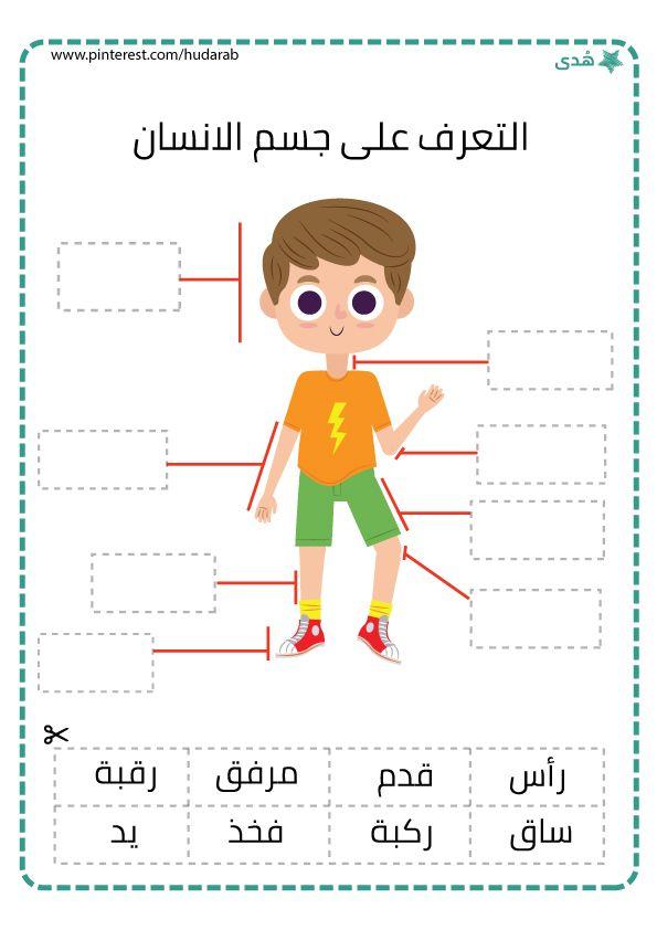 التعرف على جسم الانسان Arabic Kids Student Activities Online Activities