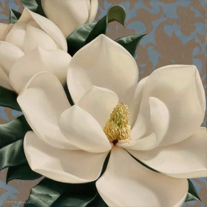 5d Diy Diamond Painting White Magnolia Flower Round Plastic Bits That Are Attached To An Adhesive Canvas By Assig Flower Painting Magnolia Paint Flower Art