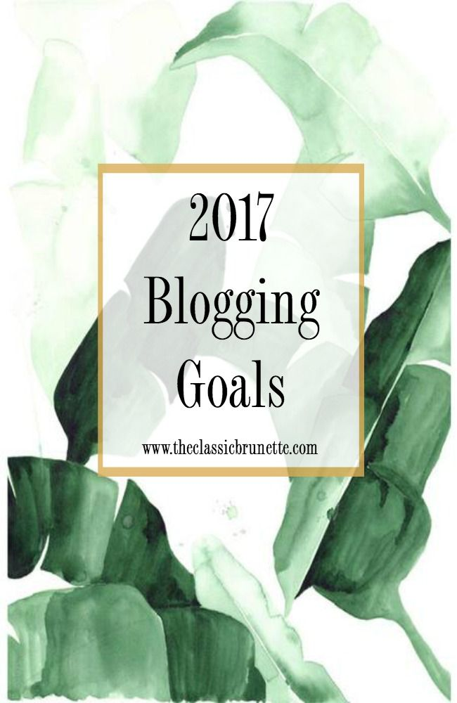 2017 Blogging Goals – The Classic Brunette. Know of any good blog E-books or E-courses to take?