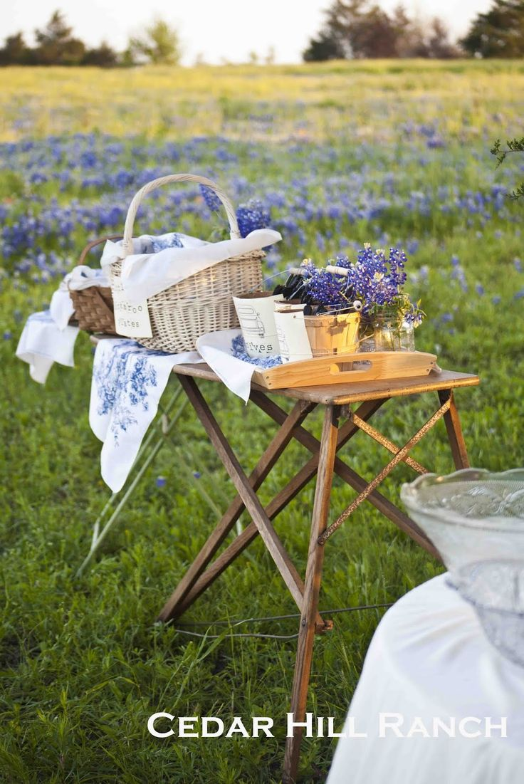 best outdoor party images on pinterest birthdays party ideas
