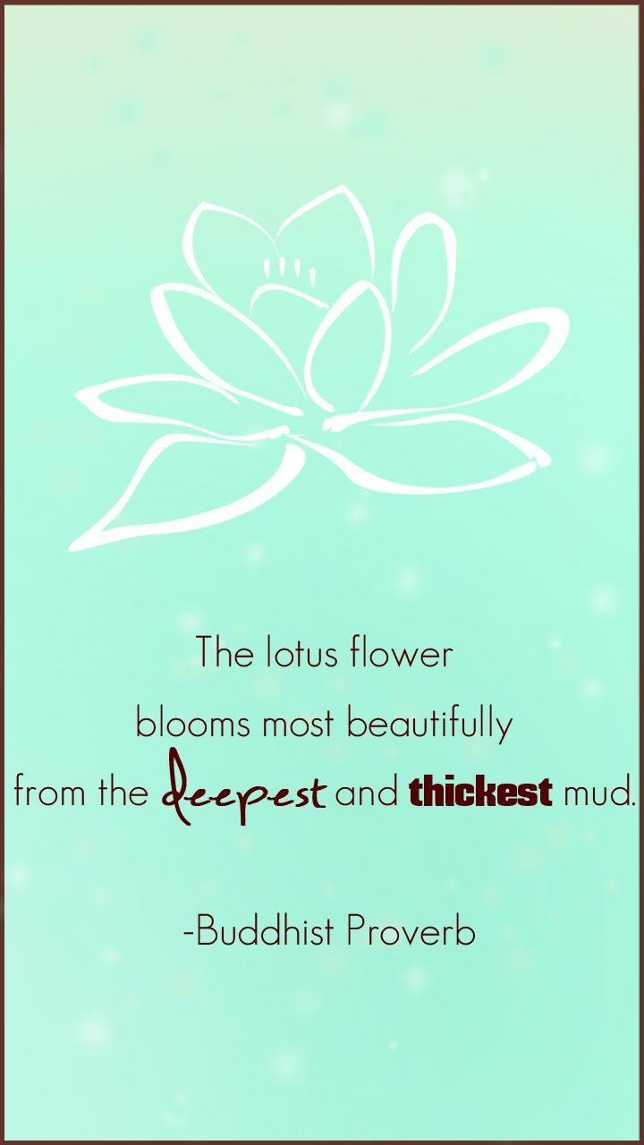 The lotus flower blooms most beautifully from the deepest and thickest mud. - Buddhist Proverb