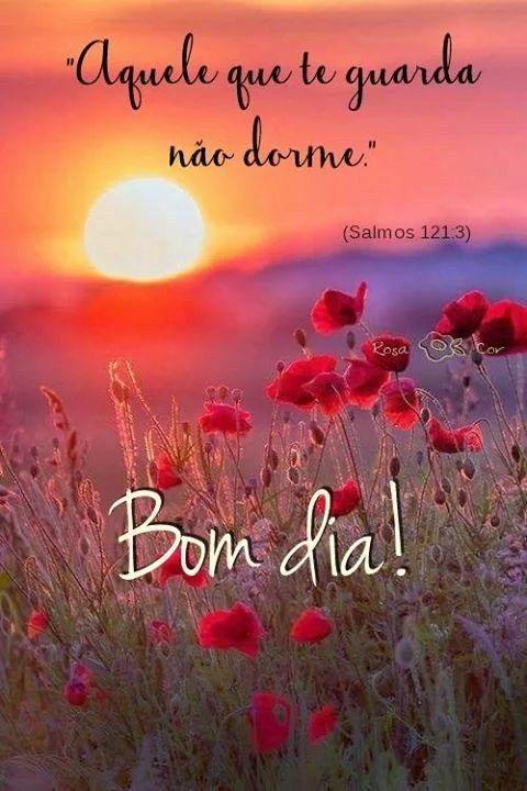 Bom Dia Com Muita Alegria Paz Amor No Coração Frases Mensagem De
