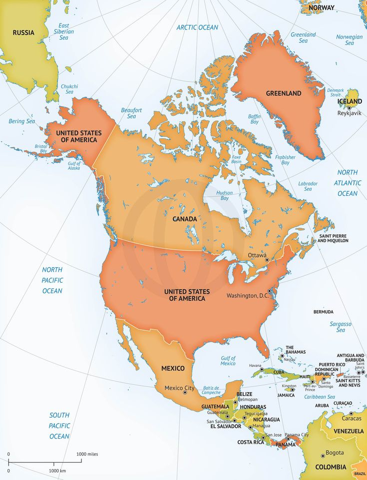Vector Map Of North America Continent - Political map of the usa