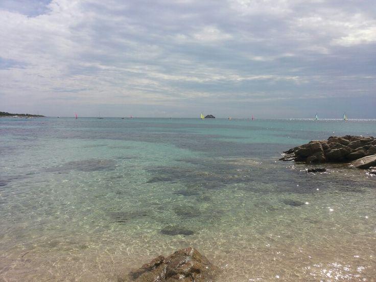 Caramontinu, Corse