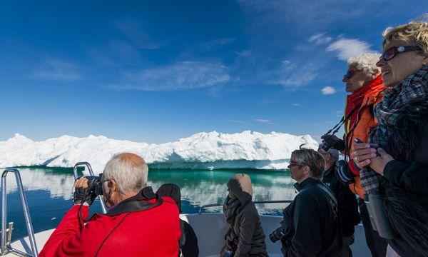 Дикая природа Арктики #Greenland