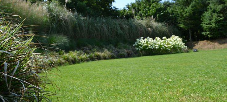 Hoe moet ik mijn tuin bemesten? | Tuinonderhoud tips