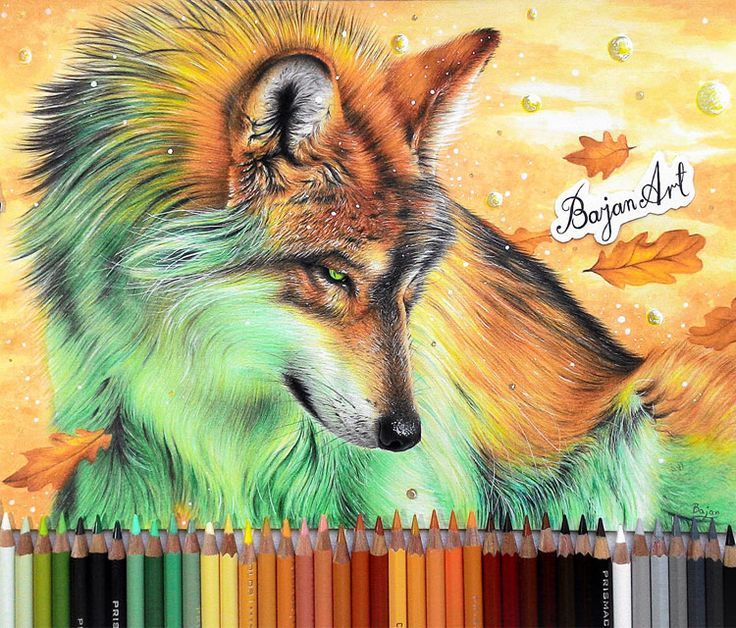 1000 images about drawing on pinterest studios skull for Cool fox drawings
