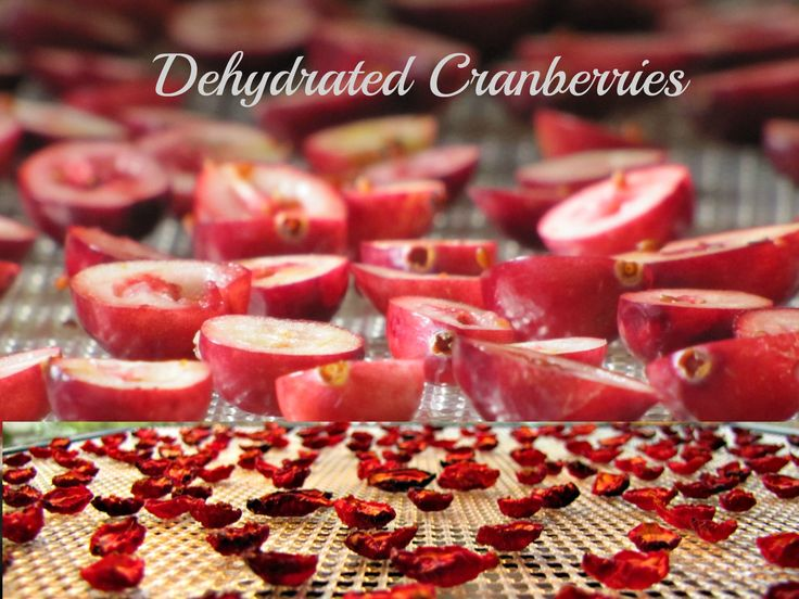 While cranberries are available now, here's an idea for you! Dehydrated cranberries! If using frozen berries, let thaw and drain off any excess liquid. Cut berries in half crosswise. Place them skin side down on trays. Dray at 130 degrees for approximately 10-14 hours. When dry, store in a sealed jar or bag.