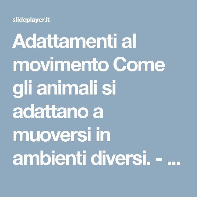 Adattamenti al movimento Come gli animali si adattano a muoversi in ambienti diversi. -  ppt scaricare