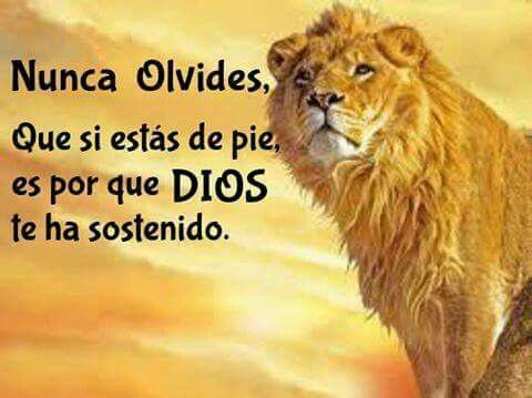flirting quotes in spanish quotes bible images pictures