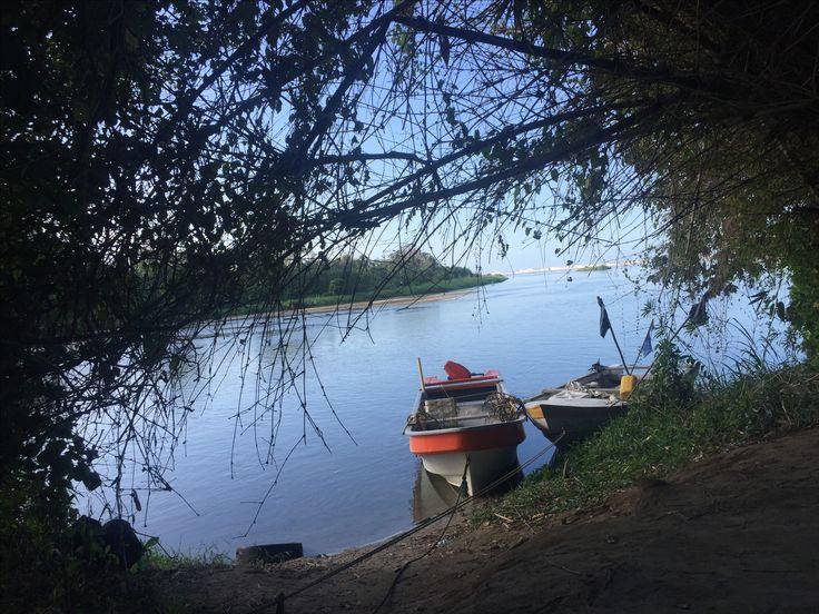 Ahí. Justo ahí termina el río que desciende de la Sierra Nevada de Santa Marta. Justo ahí empieza a mezclarse con el mar. Palomino, Colombia.