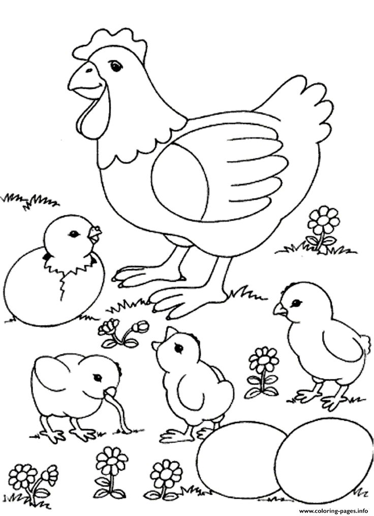 Nice Farm Animal Coloring Book