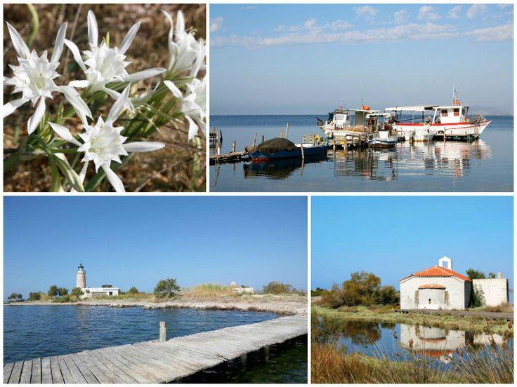 Boottour in de lagune van Mesolonghi, Griekenland