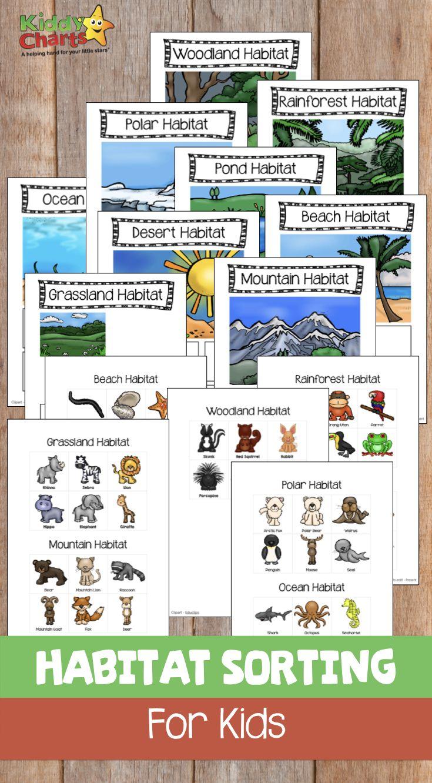 This Wonderful Free Animal Habitat Sorting Game For Kids Is Fantastic Animal Habitats Preschool Animal Activities For Kids Animal Habitats [ 1332 x 735 Pixel ]