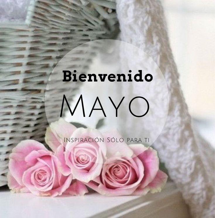Postales con rosas rosadas Bienvenido Mayo Fashion Wallpaper, Girl Wallpaper, Hapy Day, Mayo, Instagram Posts, San Pablo, Cool, Twitter, Pug