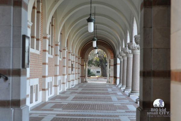 Uncover Secrets at Rice University... Half Day in Houston Adventure