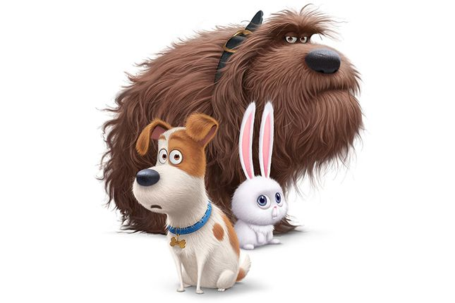Los Personajes De La Vida Secreta De Tus Mascotas Cinergetica Pets Movie Secret Life Of Pets Animated Movies