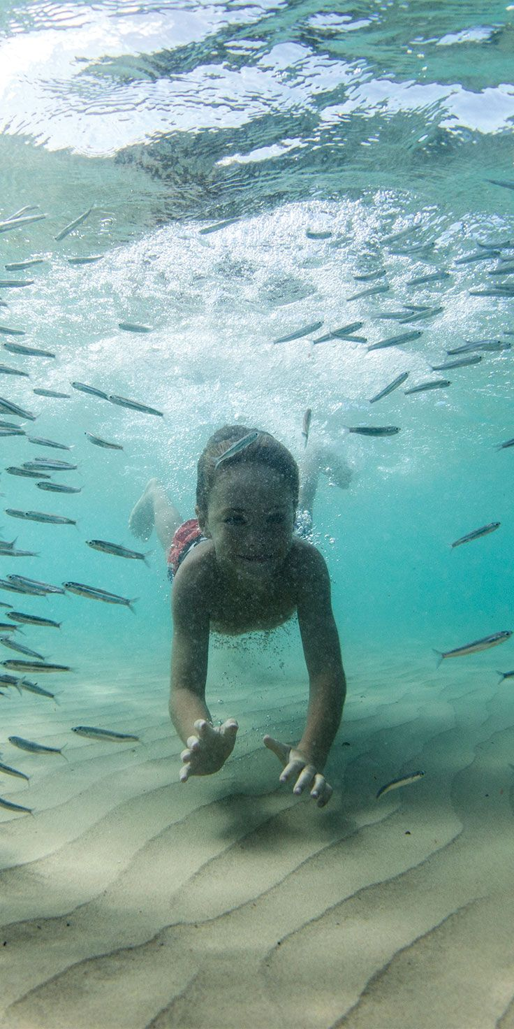 Spending time snorkelling or swimming on holidays with the family is a must! - by Sean Scott