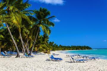 $35 Freeport Shore Excursion: Paradise Cove Beach Snorkeling Tour