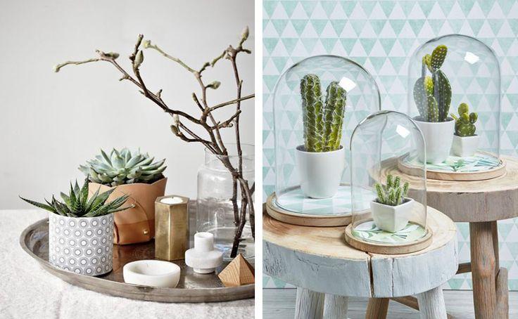 Rona Modern Nordic Hanging Lamp