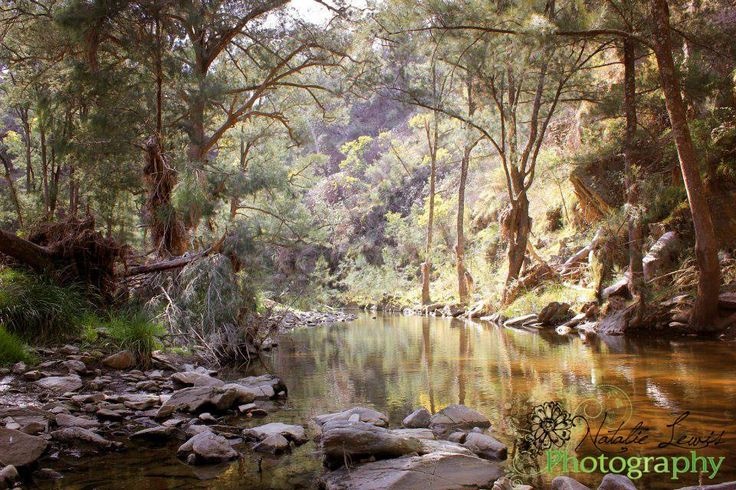 Ophir Reserve, Orange NSW