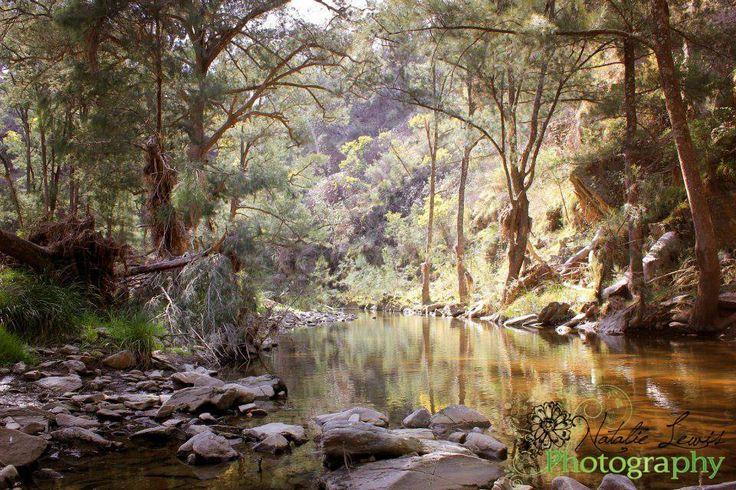 Ophir Reserve, Orange NSW
