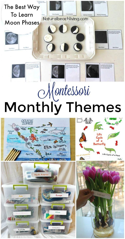 12 More Months of Montessori Monthly Themes, Montessori holiday activities, Seasons, Montessori tray ideas, Montessori Science, Preschool themes and more