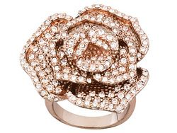 Titanic Jewelry Collection (Tm) Dorothy's Rose Ring. It has my name in it. I have to love it.