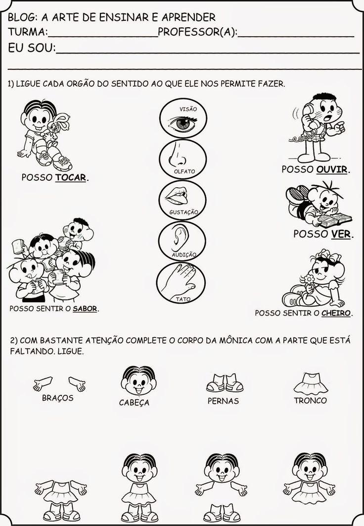 EDUCAÇÃO EM ALTO GRAU: CORPO HUMANO - ÓRGÃOS DOS SENTIDOS