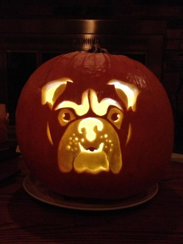 English Bulldog News Forums ~ - Winners of our Pumpkin Carving Contest!